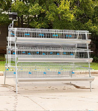 Hot galvanized automatic chicken cage for sale growing broilers and pullets