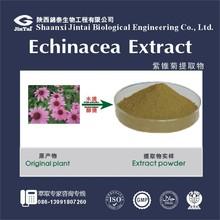 Pure UV Polyphenols 4% Echinacea purpurea extract