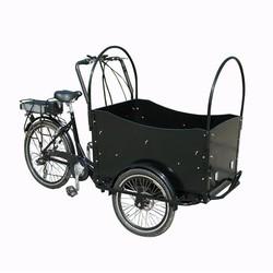 2015 Adult Trike Three Wheeler Price/3 Wheel Motorcycle/bakfiet Cargo Bike Made In China