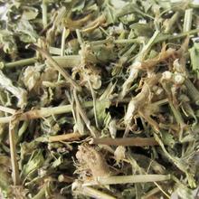 bian xu cao Common Knotgrass Herb for detoxifying drugs