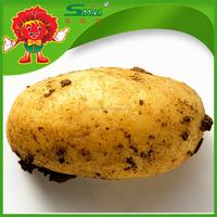 2015 wholesale price for large frozen yellow potato