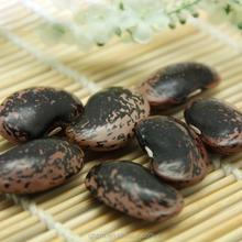Esportazione di qualità fagioli, nero lenticchie, fagioli neri