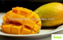 High quality freeze dried lemon powder