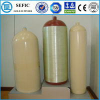 Worldwidely Used Seamless Steel CNG Cylinder