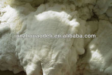 Best Quality and Cheap Price Rabbit Fur Skin from Factory