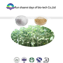 100% pure natural extract radix boehmeriae Extract ramie root Extract