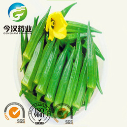 High Quality Okra Extract Powder Dried Okra Powder Manufacturer in China