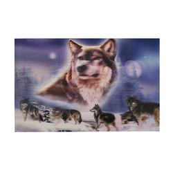 Hot sale pp plastic 3d wolf picture