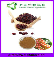 Factory supply free samples schisandrins extract powder fructus schisandrae