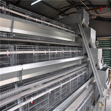 China supplier simple beautiful cages for laying hen used
