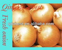 2014 crops Fresh yellow onion for sale
