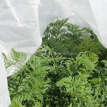good quality Anti-UV treated pp non woven agricultural cover/landscape