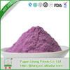 Alibaba china hot sell tropical fruit extract powder