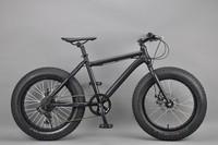 20 inch Fat bike chinese dirt bike brands