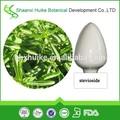natural de la hoja de stevia extracto en polvo