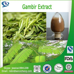 100% Natural Gambir Extract/Uncaria Gambier Extract