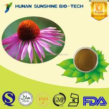 Good reputation supplier for enhancing human immunity Echinacea purpurea Extract 2% polyphenols