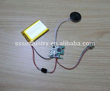 ic chip for musical greeting card,USB Port Download Custom Sound & Recharge Power