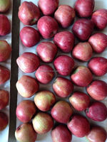 20kg red star apple 88/100/113/125/138/150 Trade Assurance