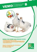 VemoHerb B Feed Additives - Innovative growth stimulant based on herbal extracts, an alternative of the nutrition antibiotics