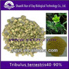 Pure natural extract of Tribulus terrestris