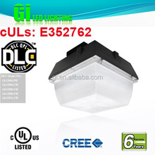 6 years warranty DLC UL cUL Led Canopy Light Exported To Uk