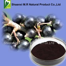 Factory Price Black Currant Extract Anthocyanins 5%-25% Powder