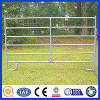 DM PVC Coated Or Hot Dipped Galvanized Tube Welded Portable Horse Fencing