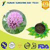 top quality with free sample red clover extract powder isoflavones