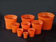 Potes de plástico para plantas de viveiro / corte / sementeira 2015