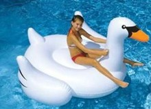 inflatable pool swan