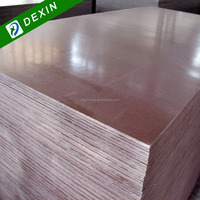 China Brand Construction Plywood Brand Film Faced---Dexin