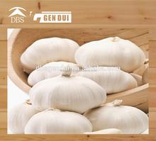 pure white garlic new crop white garlic new crop white garlic