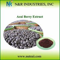 High Quality Acai Berry Extract 4:1 Powder form