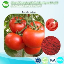 high quality tomato extract lycopene powder