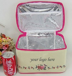 Large Insulated Lunch Soft Bottle Tote Cooler Bag
