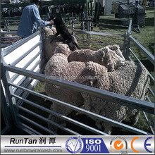 High quality goat fence panel( factory ,ISO 9001 Certificate )