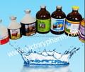 Animais injetável vitaminas do complexo B para bovinos , ovinos camelo cavalo