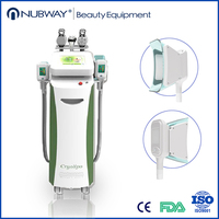 Professional cool tech weight loss fat freeze cryolipolysis equipment for beauty spa