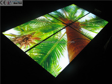 1200*600mm middle east indoor decoration palm tree sky lighting panel