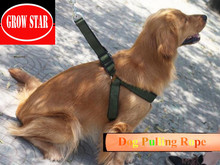 Harness wholesale dog pet collar traction rope
