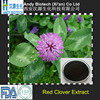 Red Clover Flower P.E. Red Clover Isoflavone 60%