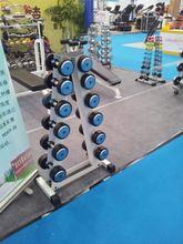 TOP SALE BEST PRICE!! custom design dumbblls in weight lifting on sale
