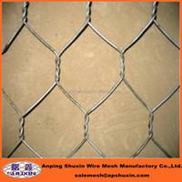 Anping Hexagonal Mesh/Chicken Wire Mesh Factory