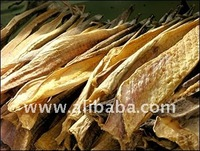 dried Stock Fish and dried Fishheads from Iceland