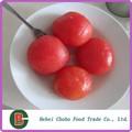 alta qualidade conservas de tomate pelado inteiro