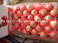 2015 export fresh fruits from egypt/red fuji apple from china