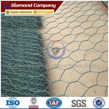 2m*50m galvanized PVC coated Gabion Mesh net