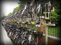 Two Tier Bicycle Rack (Good Quality and Many optionals to provide).