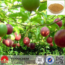 Narural Plant Passion Flower Extract